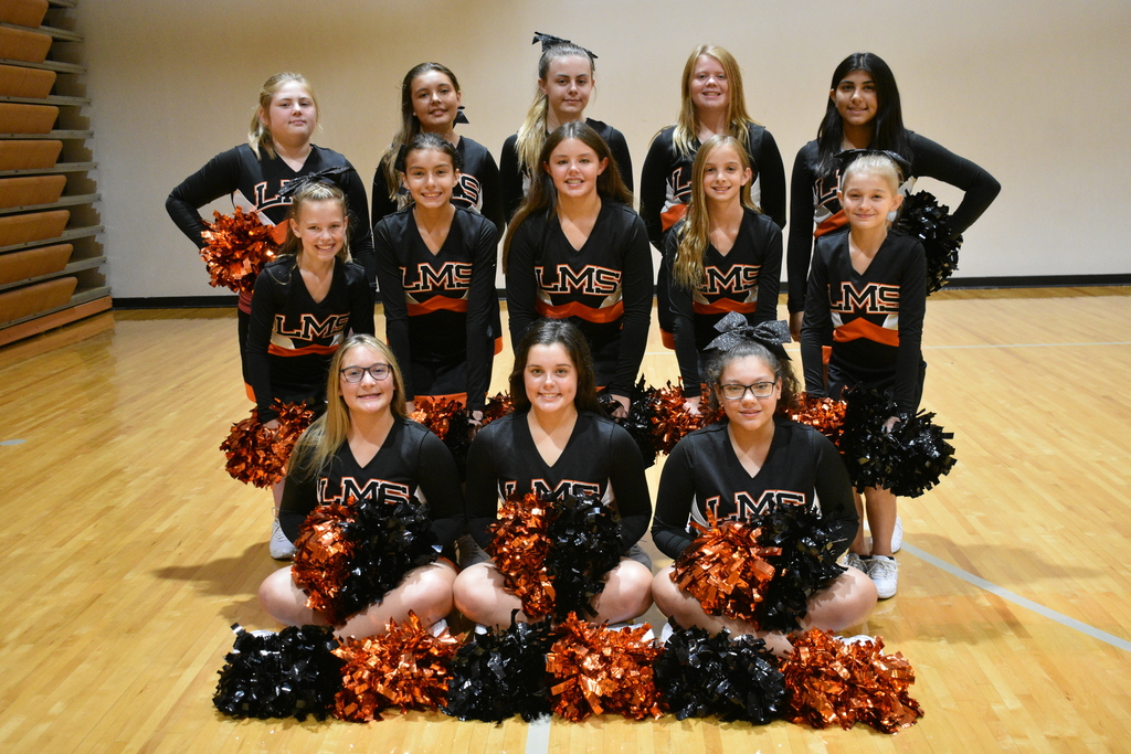 Meet the LMS 2019-2020 Cheerleaders