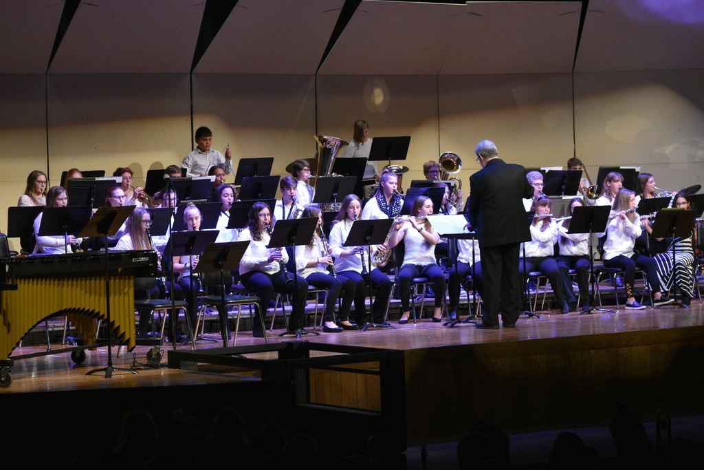 LMS Band Performance
